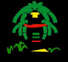 Logo COCOCAUCA nuevo